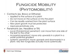 Fungicide mobility describes how the fungicide enters and moves in the plant. This is different from mode of action which describes how a fungicide inhibits fungal growth.