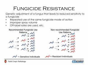 Fungicide resistance development in two populations of fungi. The population on the left has been subjected to fungicide application in a manner to reduce fungicide resistance development. While the population on the right has been subjected to repeated applications of the same fungicide.