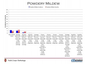 Figure 5. Powdery mildew incidence and severity in plots treated with fungicide.