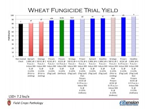 Figure 7.  Yield of wheat treated with fungicide.  Black bar indicates the non-treated check; red bars indicate fungicide application prior to jointing; blue bars indicate fungicide application at emerging flag leaf; green bar indicates fungicide application at anthesis; broken bars indicate two-application programs.