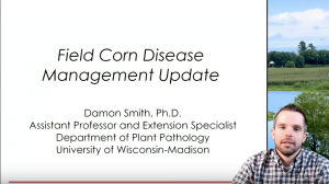 Corn Disease Management Update