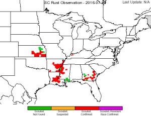 Figure 3. Corn Southern Rust Observations as of July 22, 2016